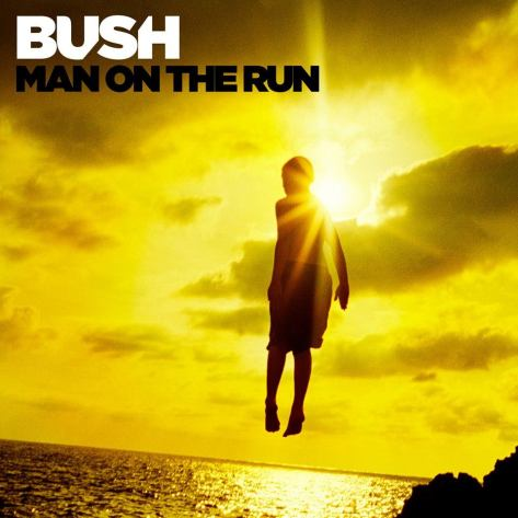 bush man on the run