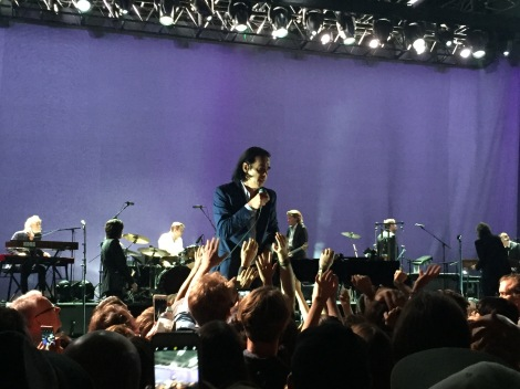 nick cave brisbane riverstage 25/1/17