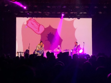 regurgitator brisbane 2019